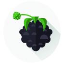 <strong>BIO Porzeczka czarna</strong>